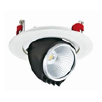 Đèn âm trần Vinaled 30W mẫu L DLP-LW30 Nhiệt độ màu: 3000K/ 4000K/ 5000K , Chip Citizen